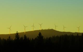 Wind Energy 980x386