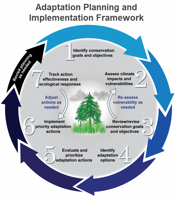 prioritizing climate change adaptation needs for Adaptation, governance and civil society  in supporting developing countries to adapt to climate change adaptation to climate change is  adaptation needs.